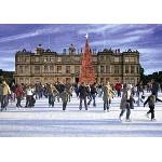 Великобритания: Рождество в сафари-парке