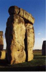 The stone settings