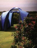 Treen Farm Campsite, Treen, St Levan, Penzance, Cornwall
