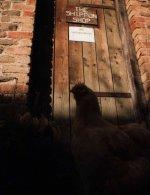 Westermill Farm, Exford, Exmoor, nr Minehead, Somerset