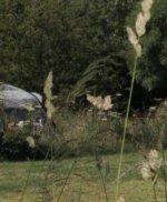 Ферма – парк «Хук» (Гор-лейн, Аплим, Лайм-регис, Дорсет)