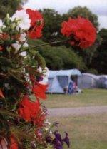 Wilksworth Farm, Cranborne Road, Wimborne, Dorset