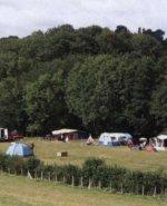 Bedgebury Camping, Pattenden Farm, Coudhurst, Kent