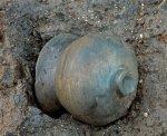 """В Великобритании археологи обнаружили """"Помпеи"""" бронзового века"""