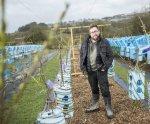 В Англии открыли ферму по выращиванию мебели