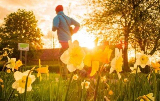В британском Сток Гиффорде ввели оплату для бегунов в парках